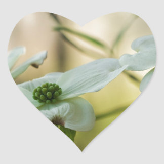 White Dogwood Blossoms - Cornus florida Heart Sticker