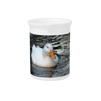 White Duck swimming in a creek Pitcher