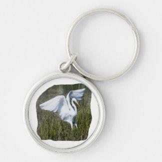 White Egret landing in marsh Key Ring