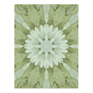 white floral abstract engagement wedding home art postcard