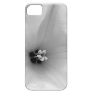 White Flower Center iPhone 5 Cases