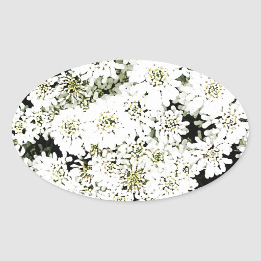 White Flower Floral Nursery Peace Cute Superb nice Oval Stickers
