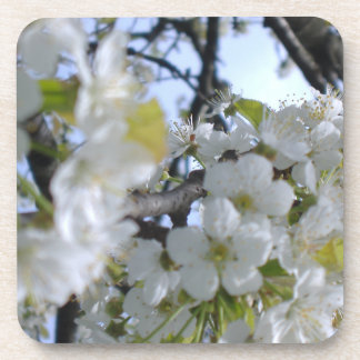 White Flowers on Tree Branches Cork Coaster