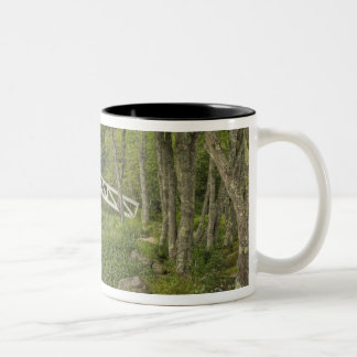 White footbridge, Somesville, Mount Desert Two-Tone Coffee Mug