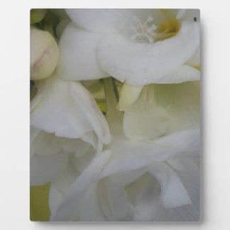 White freesia plaque