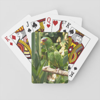 White-fronted Amazon Playing Cards
