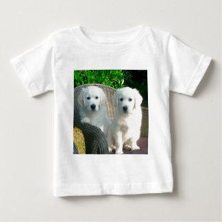 White Golden Retriever Dogs Sitting in Fiber Chai Baby T-Shirt