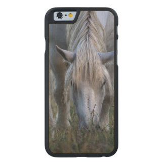 White Horse Carved Maple iPhone 6 Case