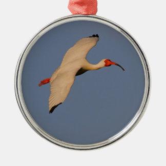 White Ibis in Flight Christmas Ornament