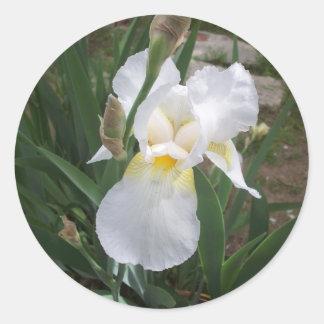 White Iris Round Sticker