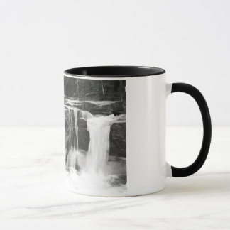 White Mountain's Waterfall Cup