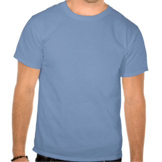 White on Skyblue Indian' Tee