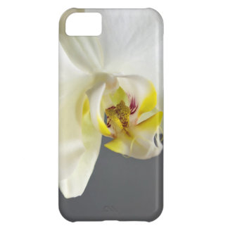 White Orchid Flower iPhone 5C Case