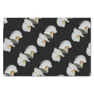 White Orchids - quiet moment Tissue Paper