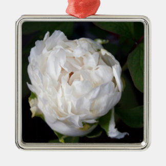 White Peony Floral Photography Square Ornament