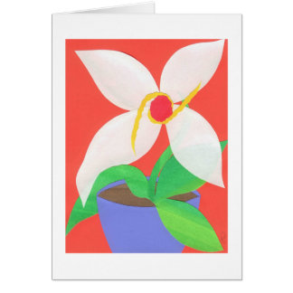 White Poinsettia Card