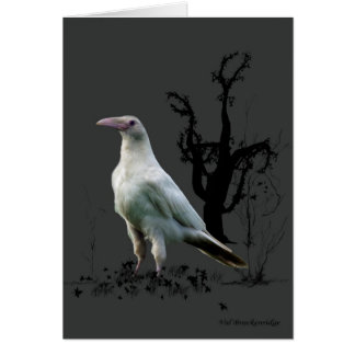 White Raven Greeting Cards