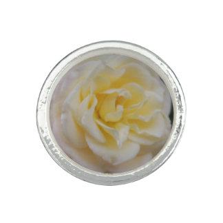 White Rose/Flower