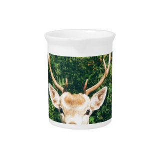 White-Tailed Deer Peeking Out of Bushes Pitcher