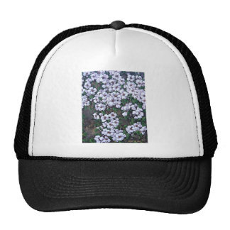 white waterfall floral cap
