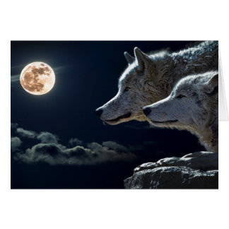 White Wolves in the Full Moon Card