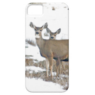 Whitetail Deer Wildlife Animals Fawns Case For The iPhone 5