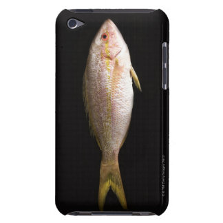 Whole Sea Bass iPod Touch Covers