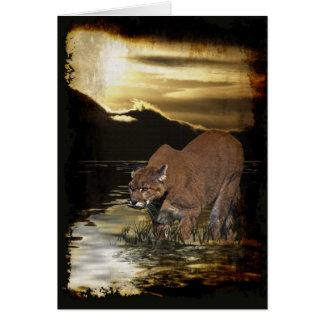 Wild Big Cats Animal-lover Design Card