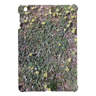 Wild daisy growing in field beside a church iPad mini case