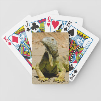 Wild Green iguana Bicycle Playing Cards