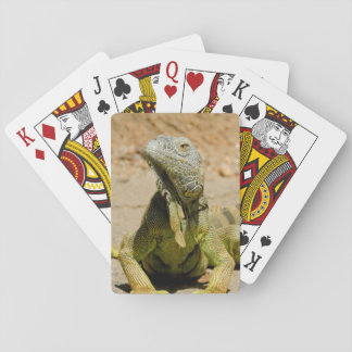 Wild Green iguana Playing Cards