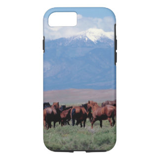 Wild Horses Out West iPhone 7 Case