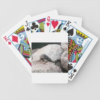 Wild Iguana Bicycle Playing Cards