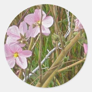 Wild Pink Hibiscus in Salt Marsh Items Sticker