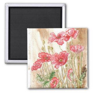 'Wild Poppies' Magnet