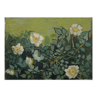 Wild Roses by Vincent Van Gogh Photographic Print