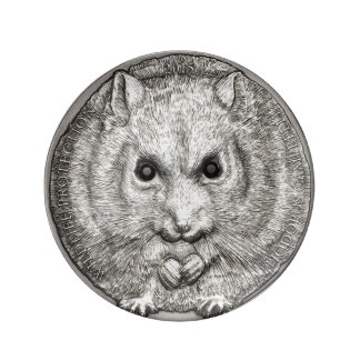 WILD THINGS: Hamster Decorative Porcelaine Plate Porcelain Plate