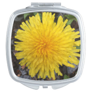 Wild Yellow Dandelion in Summer Compact Mirror