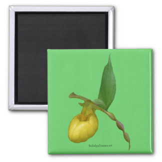 Wild Yellow Lady Slipper Flower Photo Magnet