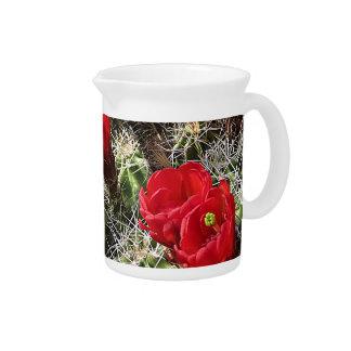 Wildflowers - Grand Canyon - Arizona Pitcher