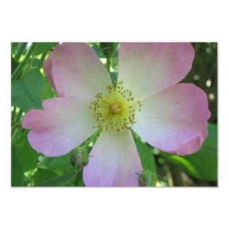 wildrose invitation