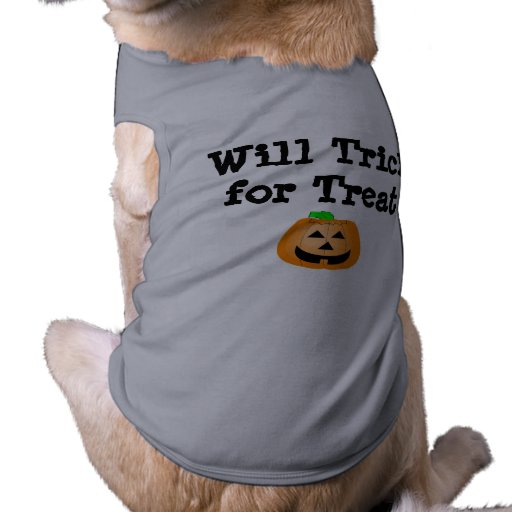 Will Trick for Treat Pet Clothes