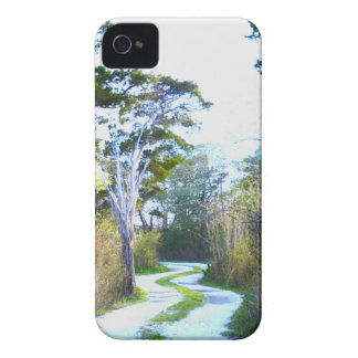 Winding Path iPhone 4 Case-Mate Case