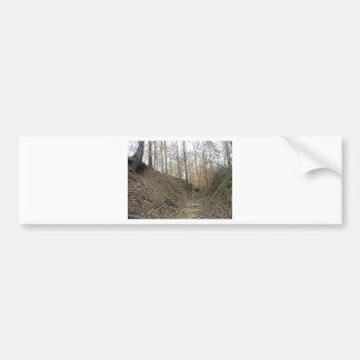 Winter at Sunken Trace Natchez Trace Parkway MS Bumper Sticker