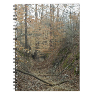 Winter at Sunken Trace Natchez Trace Parkway MS Notebook