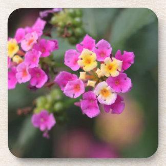 Winter Beautiful Flowers Coaster