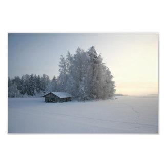 Winter Day. Photographic Print