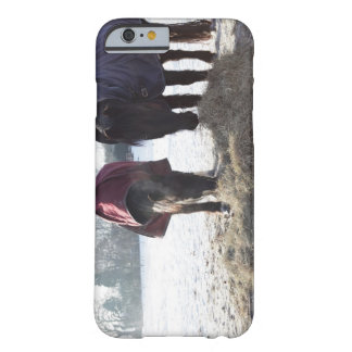 Winter in Rural Hertfordshire, England Barely There iPhone 6 Case
