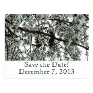 Winter Pine Save the Date Postcard