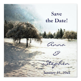 Winter wedding save the date announcement